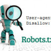 How to Create a Robots.txt File